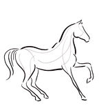 Black and white horse`s silhouette Royalty Free Stock Photography