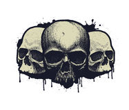 Black and white human skull Stock Image