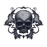 Black and white human skull Stock Photography