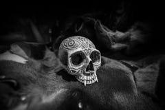 Human skull Model on cow skin. Black and White Human skull Model on cow skin texture Royalty Free Stock Image