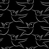 Black and white hummingbird wallpaper Royalty Free Stock Photography