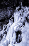 Black and white ice falls. A year around spring water is frozen into a multi layer cascade in freezing temperatures Royalty Free Stock Image