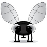 Black and white illustration of a baby fly Royalty Free Stock Photography