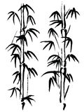 Black and white illustration. Bamboo Stock Photos