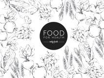 Black and white illustration healthy food vector illustration
