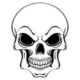Black and white illustration of human skull in ink hand drawn style. stock photos