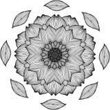 Black and white illustration of a mandala - a flower of life. Chrysanthemum. stock illustration