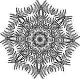 Black and white illustration of a mandala - a flower of life. Fern and leaf fractal. Cosmic flower Stock Photo