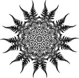 Black and white illustration of a mandala - a flower of life. Fern and leaf fractal. royalty free illustration