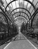 Black and white image of archway overgrown with plants at park royalty free stock images