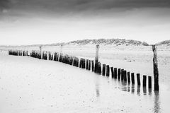 Black and white image of beach at low tide with wooden posts lan Royalty Free Stock Photography