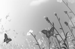 Butterflies and flower field in sunlight of summer. Black and white image of butterflies and flower field in afternoon sunlight of summer vector illustration