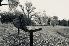 Black and white image of an empty bench royalty free stock images