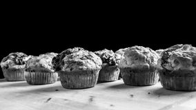 Black and white image of freshly baked muffins Stock Image