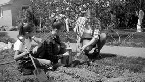 Black and white photo happy family working in garden at sunny day. Black and white image happy family working in garden at sunny day Royalty Free Stock Photo
