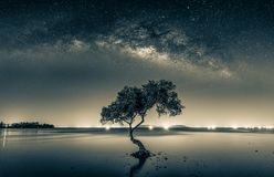 Black and white image of Night sky with stars and silhouette man stock photo