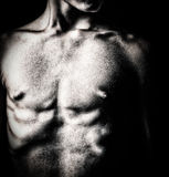 Black and white image of a nude male torso. Grunge black and white image of a nude male torso stock photography