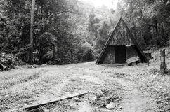 Black and white image of old hut in forest Royalty Free Stock Image