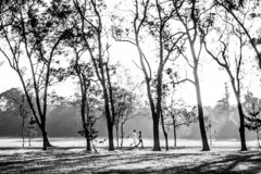 Black and white image of people jogging in the park stock photos