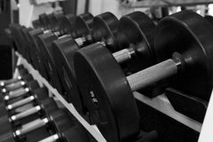 Black and White Image of a Rack of Dumbbells at a Gym Stock Photography