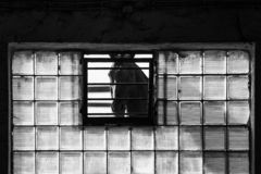 Black and white image of a sad looking horse. Trapped, standing behind the iron bars, square dirty transparent tiles, sunlight from outside, black copy space stock images