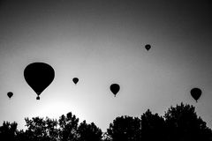 Black and white image of silhouette off. Air balloons take of on the air balloon festival in Agárd, Hungary Stock Images