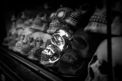 Black and white image of skulls in show window Royalty Free Stock Image