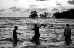 Black and white image of teenagers throwing fishing net Royalty Free Stock Photo