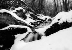 Black and white image of a waterfall in the snow Stock Photography