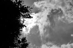 Black and white images, the sun shining down. royalty free stock photo