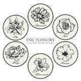 Black and white ink line style sketch flower. Hand painted flowers set. royalty free illustration
