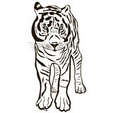 Black and white isolated tiger. Royalty Free Stock Photos