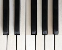 Black and white keys on old ivory keyboard of grand piano. Closeup of black and white keys on old ivory keyboard of antique bechstein grand piano Stock Photography