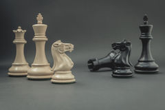 Black and White King and Knight of chess setup on dark backgroun Royalty Free Stock Photos