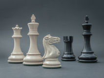 Black and White King and Knight of chess setup on dark backgroun Stock Photography