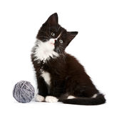 Black-and-white kitten with a woolen ball. On a white background Stock Images