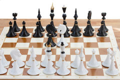 Black and white knights in front of black chess Royalty Free Stock Image