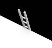 Black and white ladder Royalty Free Stock Photo