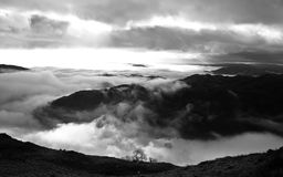Black and White Lake District. Black and White Landscape of Tree silhouette in the morning mist, lake district, cumbria, UK Stock Photo