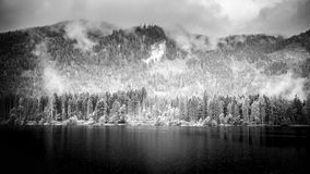 Black and white lake landscape with mountains. Cloudy and foggy view, abstract nature panorama. Foggy mountain landscape and deep mountain lake. Alps and pine Royalty Free Stock Photos