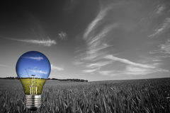 Black and white landcape with colorful light bulb Royalty Free Stock Photography