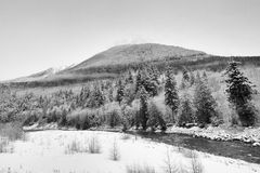 Coquihalla River in Black and White. Black and white landscape of the Coquihalla River Stock Photo