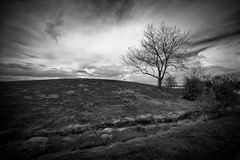 Black and White Landscape of Hill and Leafless Tree. Dramatic landscape image of an ominous stormy sky behind a small hill with a single, leafless tree, shot in Royalty Free Stock Photo
