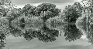 Black and white landscape with lake stock photo