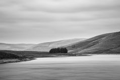 Black and white landscape of lake with trees on island Stock Photography