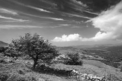 Black and white landscape view from Cadair Idris looking North t Stock Images