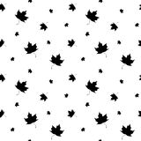Black and white leaf maple seamless pattern. Monochrome autumn leaves seamless pattern, hand painted vector background for wallpaper, fabric, paper, wrapping Royalty Free Stock Photography