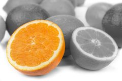 Black and white lemons and oranges friut with color one.  stock photos