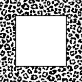 Black and white leopard frame. Vector illustration Royalty Free Stock Photos