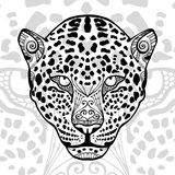 The black and white leopard print with ethnic zentangle patterns Stock Photography